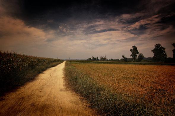 Caminho (Baixo Mondego Series) por Coursier
