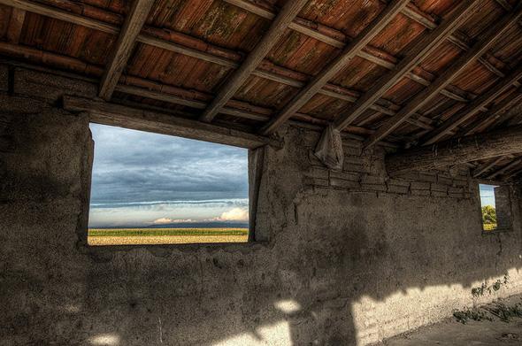 Janela sobre o campo (Baixo Modnego Series) por Coursier